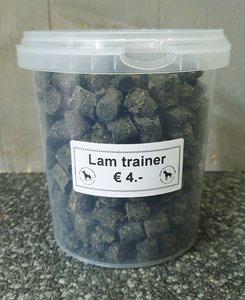 Lam trainer