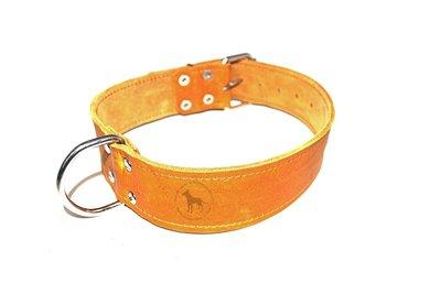 Halsband 5cm breed