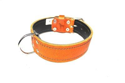 Collar 1.96 inch wide